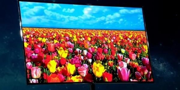 Ukradena-Samsungova-OLED-tehnologija